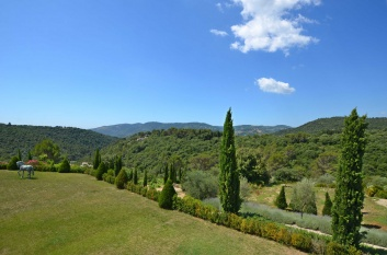 Estate from 1 hectare